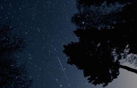 Backyard Stargazing